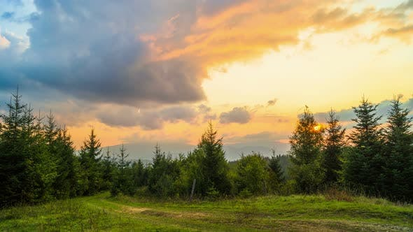 The Mountain Forest on Background of Sunset