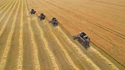 Agricultural work.
