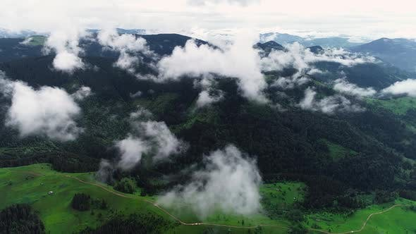 Thumbnail for Epic Aerial Flight Over Mist Forrest, Summer Trees, Sunset Colors Epic Glory Inspiration, Hiking And