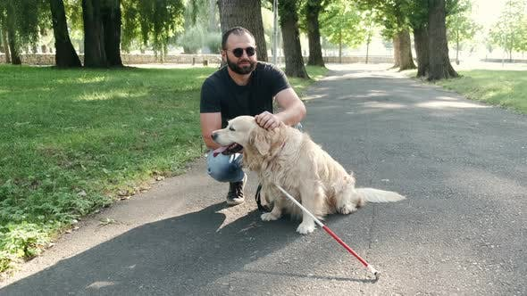 Thumbnail for Blind Mature Man with Guide Dogs Sitting on Bench in Park
