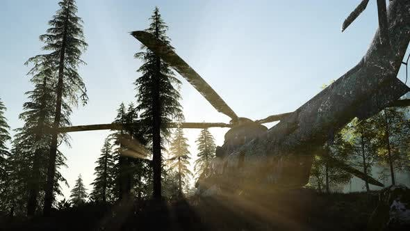 Thumbnail for Old Rusted Military Helicopter in the Mountain Forest