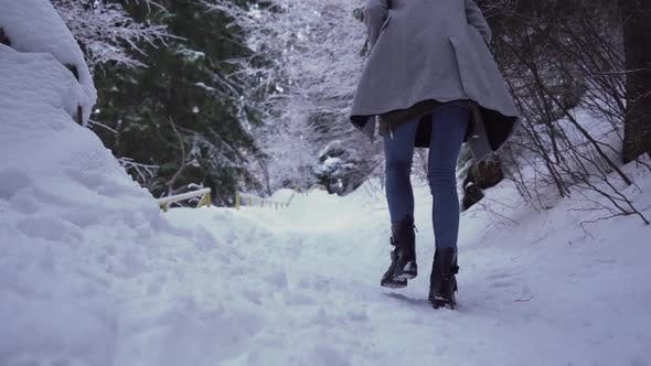 Close Look of Fairy Winter Forest. Girl Walking Alone Through Deep Snowy Forest