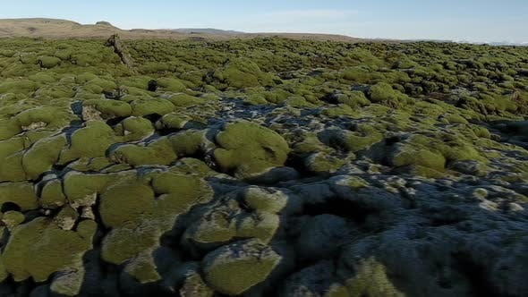 Thumbnail for Flying Over Rocks And Moss In Iceland