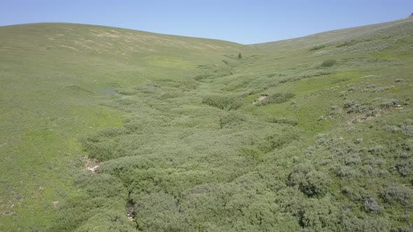 Thumbnail for Aerial Drone Up Drainage or Draw in Mountain in Bighorn Mountains Summer