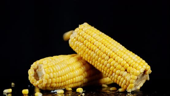 Thumbnail for Corn Fall on Whole Corn on the Cob.