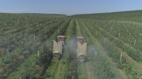 Thumbnail for Aerial view of tractors irrigating an apple plantation