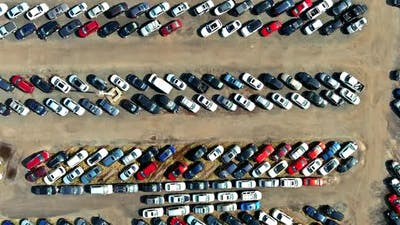 Cars terminal parked in used car auction lot on distributed a parking