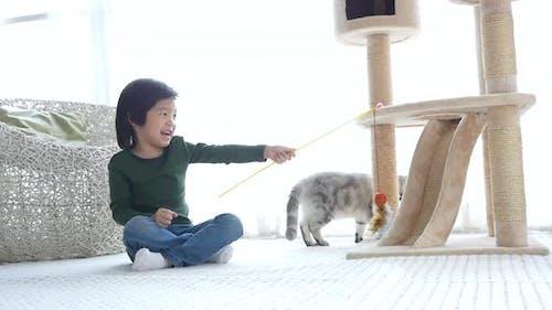 Nettes asiatisches Kind spielt mit Kätzchen Zeitlupe