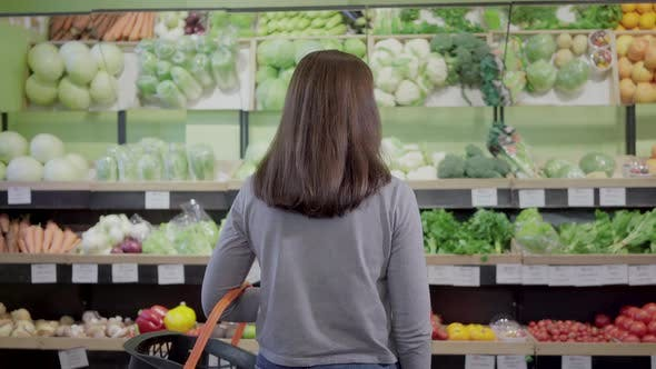 Thumbnail for Back View of Brunette Caucasian Woman Standing in Front of Shelves in Grocery Choosing Food. Young