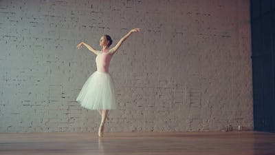 Young Ballerina Rehearsing in the Hall