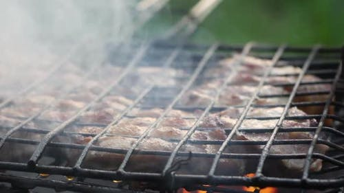 Appetizing Meat Barbecue At The Stake