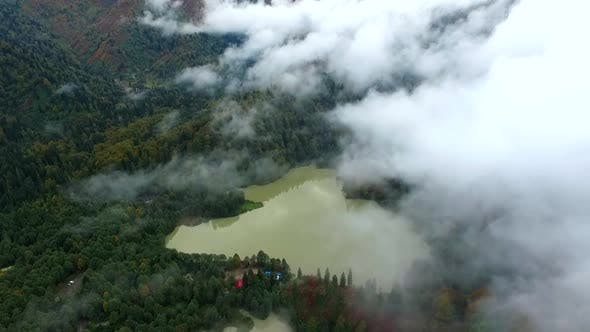 Cover Image for Aerial Forest And Lake