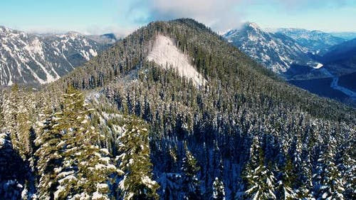Mountain Forest Triangle Shaped Peak Lines In Nature Natural Patterns Aerial Helicopter View
