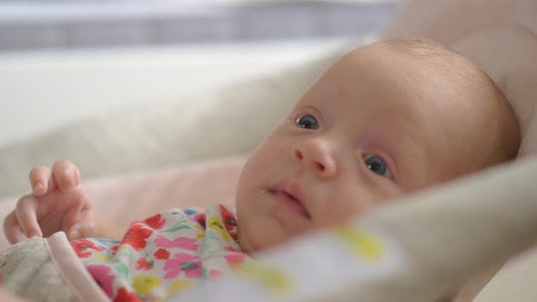 Thumbnail for Quiet Blue-eyed Baby Girl of Two Months in Bouncy Seat at Home