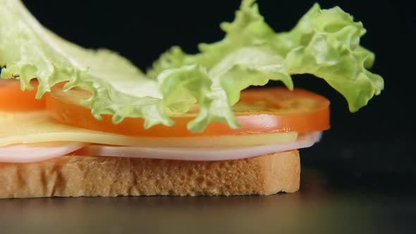 Thumbnail for Green Leaf Falls On A Sandwich