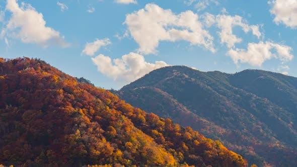 Thumbnail for Autumn Mountain