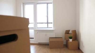 Packed Household Boxes for Movement
