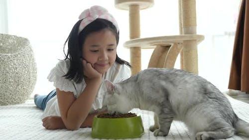 Nettes asiatisches Mädchen, das amerikanische Kurzhaarkatzen zu Hause fü