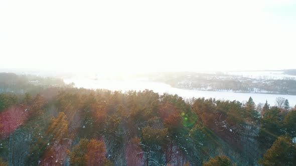 Thumbnail for Aerial View of the Winter Forest