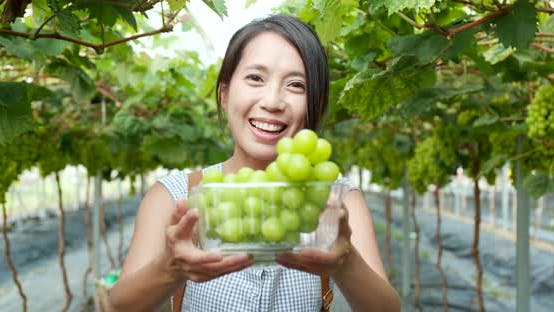 Cover Image for Woman holding green grape