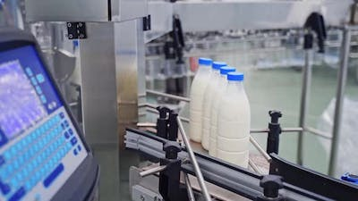 Production line of milk. Automated production line in modern dairy factory