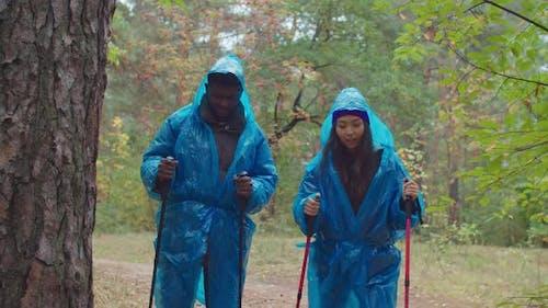 Couple Tourists in Raincoats Trekking in Woodland
