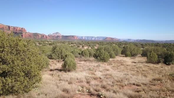 Thumbnail for Flying low over landcape of juniper bushes in the desert