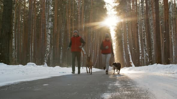 Cover Image for Man and Woman Running with Dogs in Winter