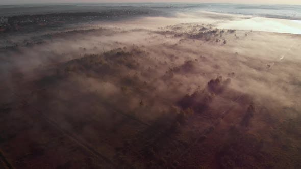 Epic aerial view of sunrise fog covering field with trees