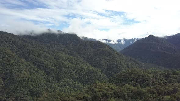 Thumbnail for Jungle Cloud Forest Ecuador Canopy Treetops Lush Green Trees Hilly Mountains