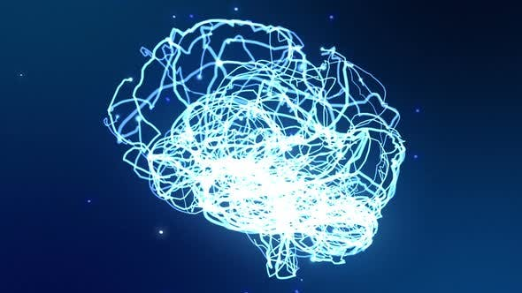 Thumbnail for Brain