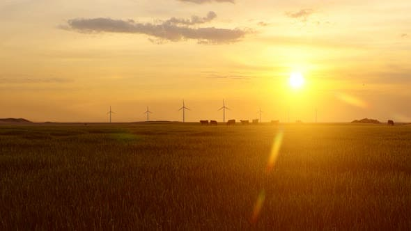 Thumbnail for Wind Turbines and Sunset Views