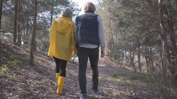 Thumbnail for Couple in Love Holding Hands Walking in the Spring Forest