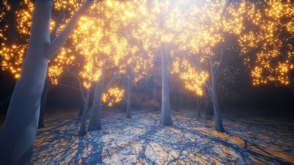 Cover Image for Glow Light Forest