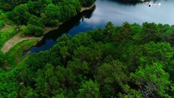 Blick Vom Copter Auf den Wald und den Fluss, Schöne Landschaft.