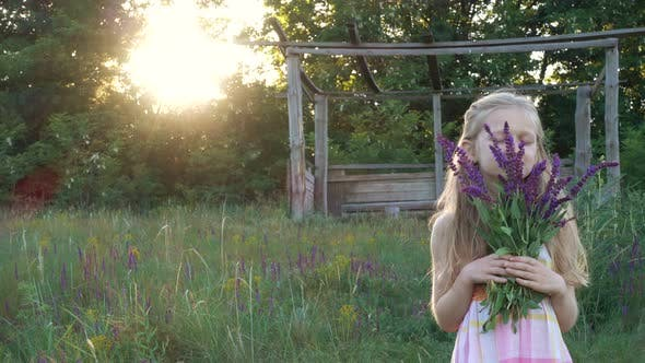 Thumbnail for Girl Collects Flowers Of Salvia At The Sunset Time 7