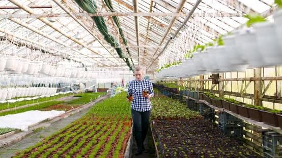 Thumbnail for Landwirtschaft Weibliche Bauer hält Blumen Sämlinge in den Händen