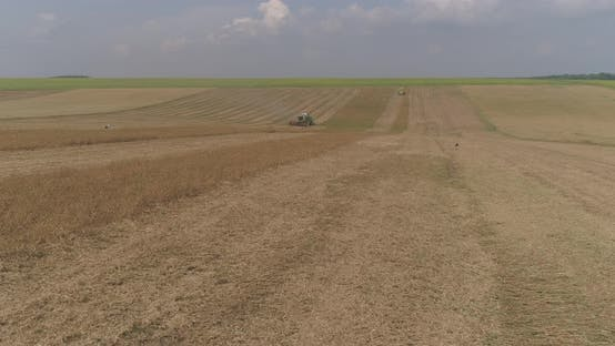 Thumbnail for Aerial view of a field in the harvest time