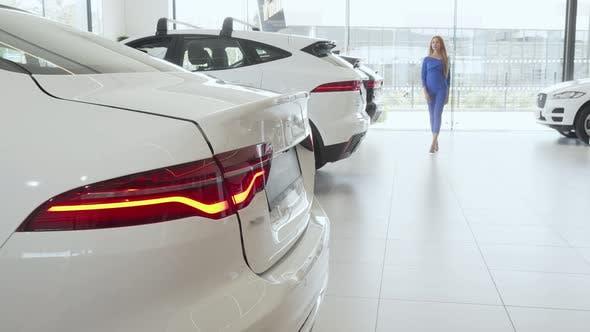 Thumbnail for Woman Choosing New Automobile at Car Dealership