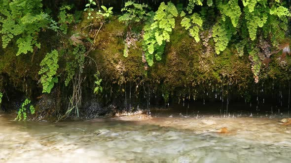 Thumbnail for Natural Landscape Water Drop