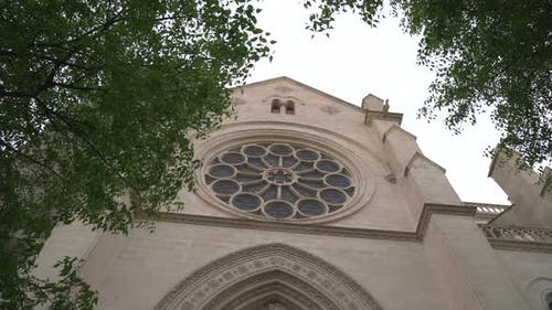 Rose window seen behind branches