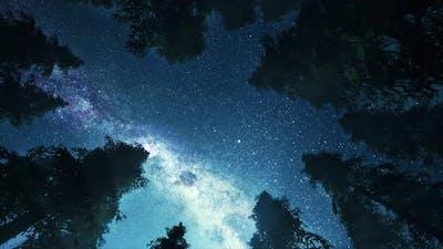 Night Sky Timelapse 4K