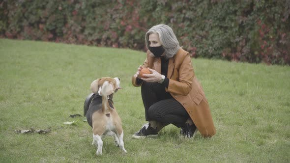 Thumbnail for Positive Senior Caucasian Woman Throwing Ball To Dog in Spring or Autumn Park