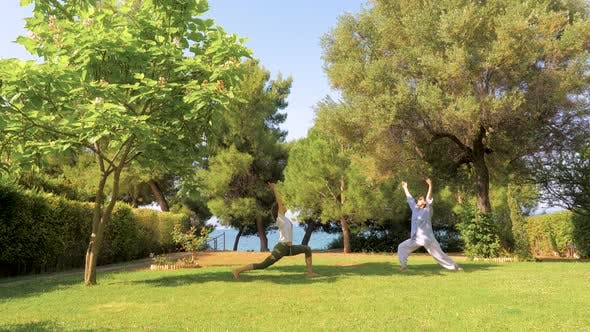 Thumbnail for Elder Mother with Adult Daughter Doing Yoga