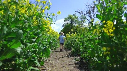 Following the Boy in Field