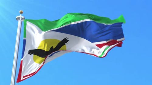 Pilagá People Flag