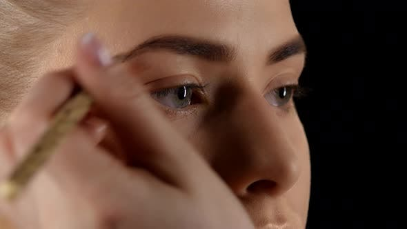 Thumbnail for Making Makeup, Eyebrow, Black, Closeup