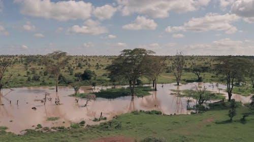 Waterhole lake in Laikipia, Kenya. Aerial drone view of Kenyan landscape