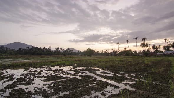Timelapse muddy land at tropical wetland