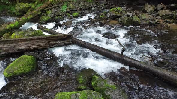 Stream with rocks and logs